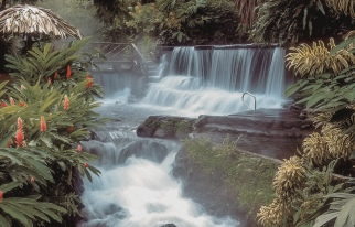Main Waterfall Tabacon Resort